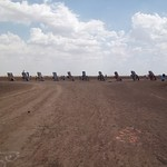 Cadillac Ranch 3, Amarillo, Texas