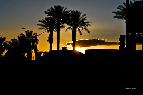 sky cloud sun tree silhouette sunrise