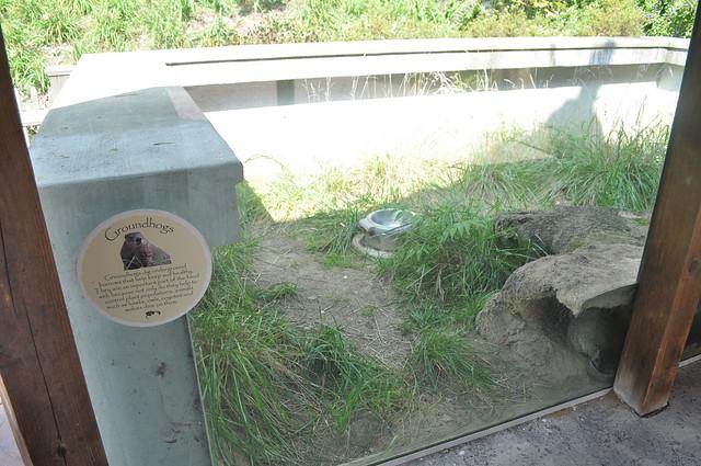 Header of Akron Zoo