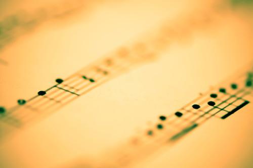 DSC_6458muziek blad20110708.jpg