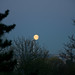 Neuilly-Sur-Marne - Astre lunaire - 21/03/2011