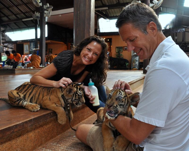 Tiger Temple Bangkok