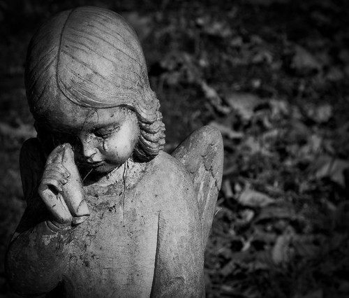 weeping angel ron clifton flickr