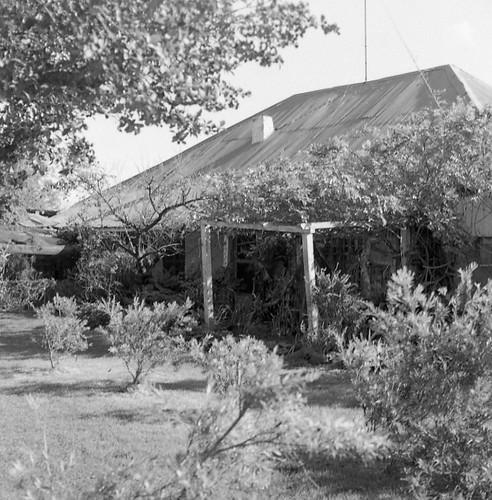 Old Duninald, 1978