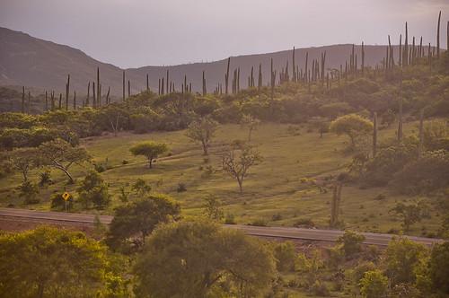 San Pedro Atzumba (21)