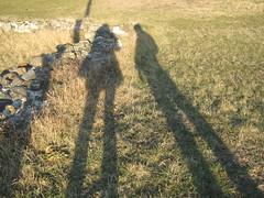 Senke - Shadows