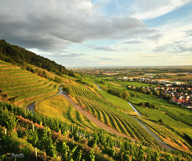 German landscape vineyards baden w rttemberg flickr photo sharing - Beautiful panoramic view house to take full advantage of the scenery ...