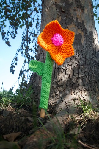 Yarn Bomb in the Park