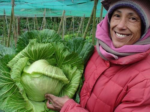 族人二月到合樸產地觀摩,族人笑開臉。(圖片來源:麻必浩部落市集臉書粉絲團)