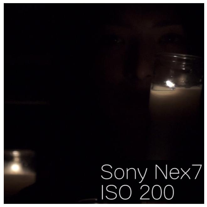 Sony_nex7_iso200_100percentcrop