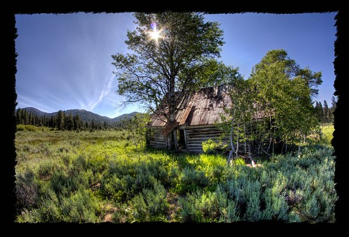 trees sky green grass wideangle bluesky fisheye idaho lensflare hdr sagebrush harriscreek