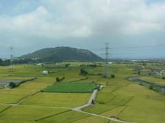 View From THSR Window