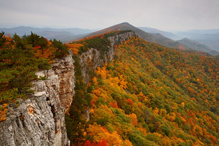 North Fork Mountain: Parting a sea of color