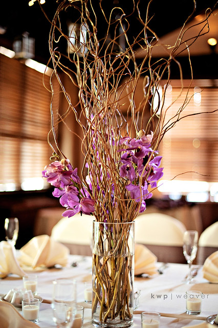 Curly willow and orchid centerpiece flickr photo sharing