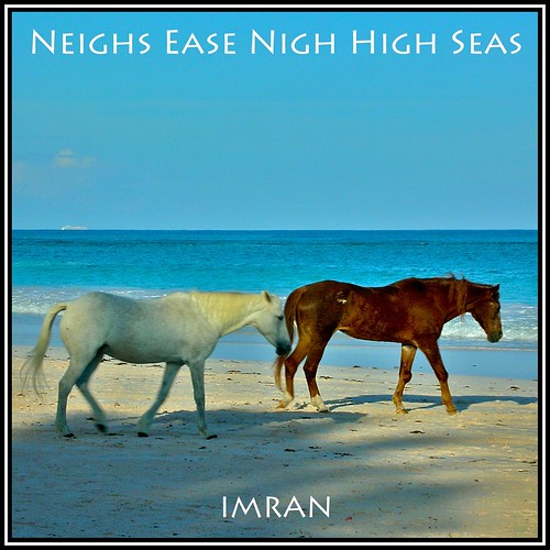ocean travel blue sea summer vacation sky horses seascape beach nature water animals square outdoors landscapes seaside sand nikon marine scenery flickr waves turquoise framed azure picasa lifestyle peaceful tranquility bluesky caribbean bahamas imran eleuthera 2007 harbourisland lifestyles s6 oceanfront imrananwar