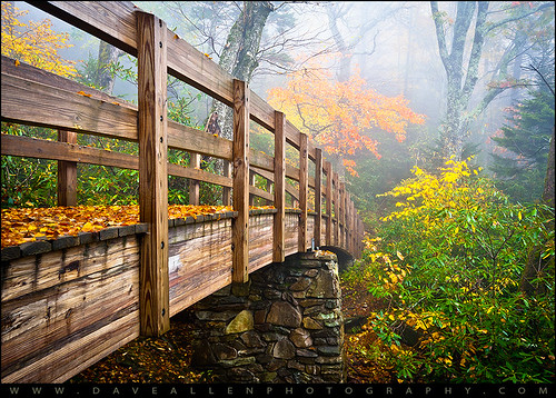 wood bridge autumn trees orange mountain mountains color green fall nature colors leaves weather yellow fog forest landscape outdoors photography foot nc woods nikon seasons footbridge hiking cove seasonal foggy scenic northcarolina wideangle hike fallfoliage foliage ridge trail parkway 28 rough appalachian linn f11 appalachia blueridgemountains blueridgeparkway blueridge daveallen 1735mm appalachians wnc grandfathermountain tanawha brp roughridge westernnorthcarolina leafchange tanawhatrail linncoveviaduct southernappalachians d700 mygearandme mygearandmepremium mygearandmebronze mygearandmesilver mygearandmegold mygearandmeplatinum mygearandmediamond