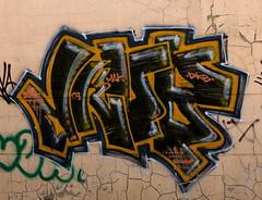 IMGP3073R
