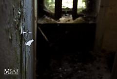 URBAN EXPLORATION: Light Discovering Darkness