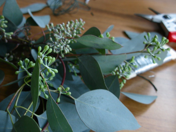 eucalyptus advent wreath 002