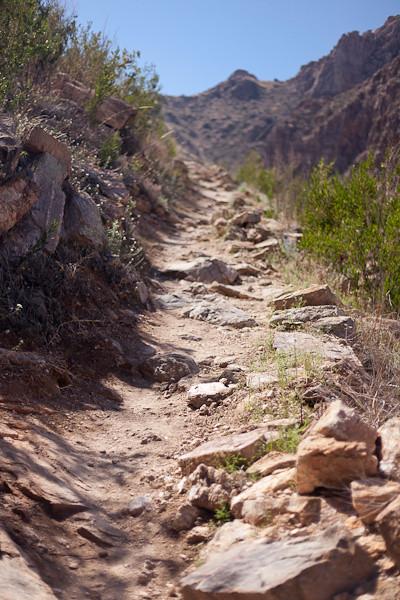It Seems the Trail Always Climbs Uphill