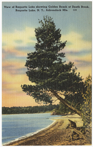 View of Raquette Lake showing Golden Beach at Death Brook. Raquette Lake, N. Y., Adirondack Mts.