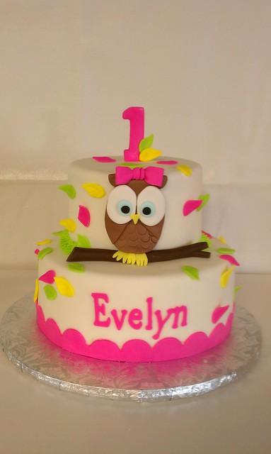Birthday Cake Photos For 1st Birthday : First Birthday Owl themed cake Flickr - Photo Sharing!