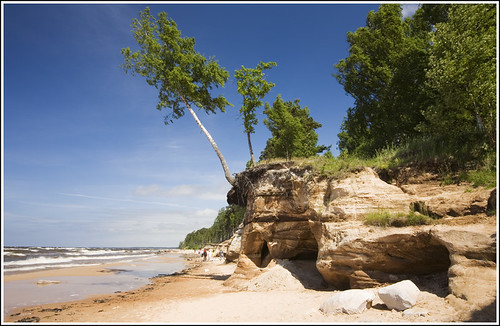 sea summer seascape tree water landscape latvia supershot flickrclassique explore6july2011 veczemjuredcliffs