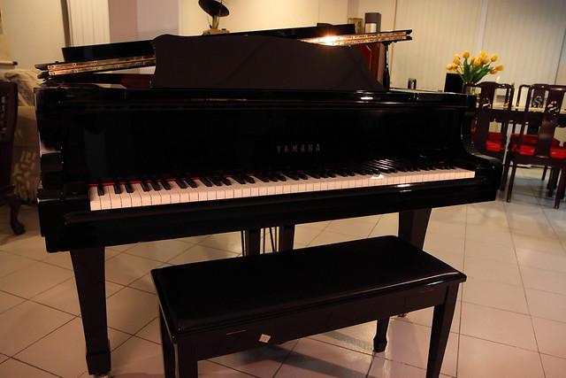 Yamaha c3 grand piano flickr photo sharing for Yamaha c3 piano dimensions