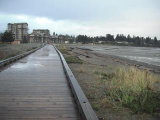 2011 10-050