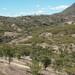Campo cerca de Mariscala de Júarez, Oaxaca, Mexico por Lon&Queta