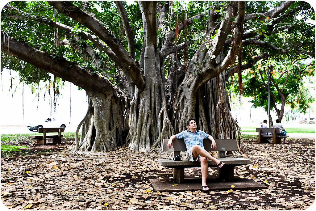 relaxing under the waikiki banyan trees