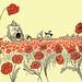 Poppies by Jeffrey