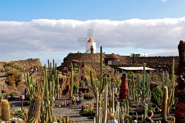 Lanzarote - Flickr CC tegioz