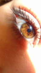 iris, orange, brown, skin, macro photography, eyelash, close-up, eye, organ,