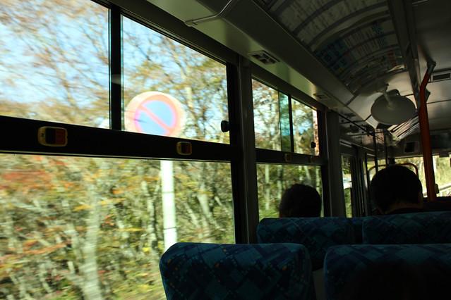20111112_金時山_0007