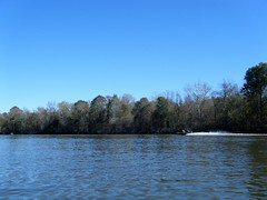 Duck Boats