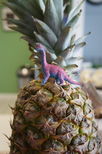 Dinosaur on my Pineapple