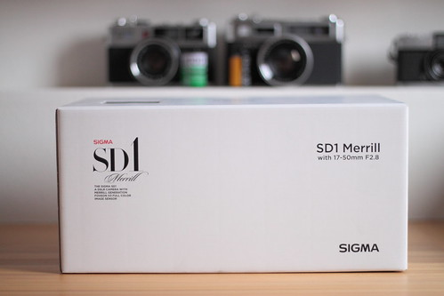 SIGMA SD1 Merrill 01