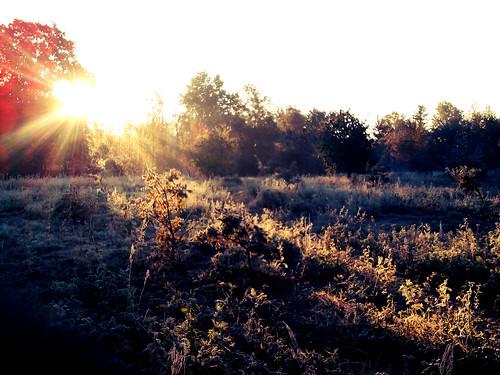 morning cold sunrise warsaw