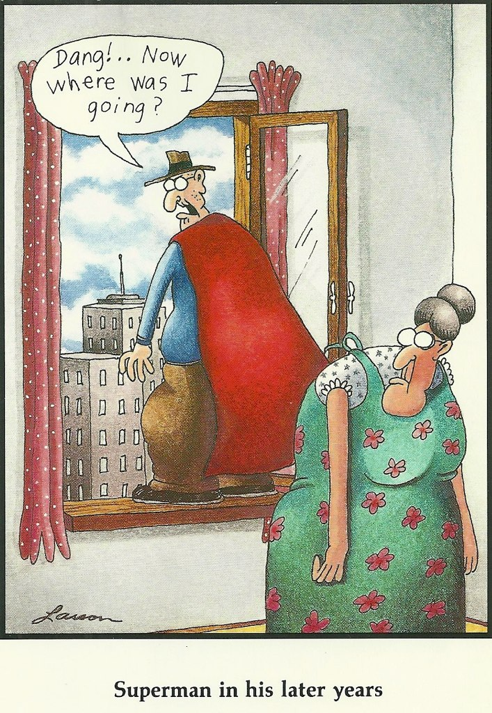 Far Side Comic Galley Entertainers