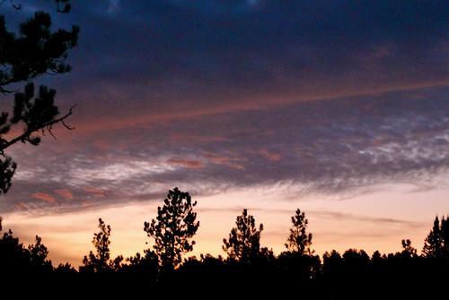 trees sky nature beauty clouds southdakota forest sunrise ilovenature nikon sd viewfrommywindow blackhillsnationalforest deadwoodsd purelynature