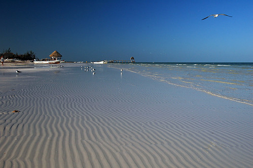 Beach at Isla Holbox, Mexico