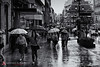 August_30__2011-_Vigo_in_the_Rain-1-Edit.jpg