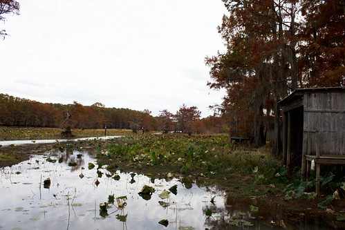 River Path 4