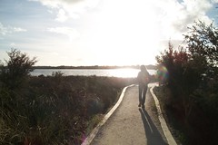 Lake Clifton No. 1