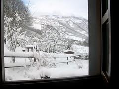 despertarse y abrir la ventana