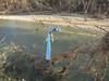 Alluvione 2011 Sangone 31