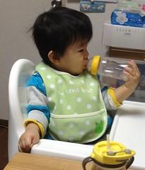 今日の片手哺乳瓶飲みとらちゃん(2011/11/22)