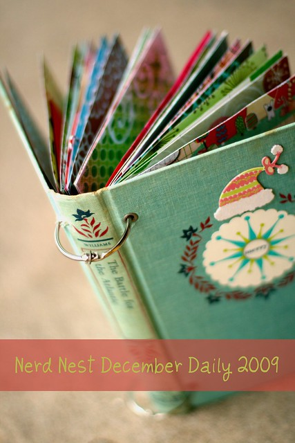 December Daily 2009 | Cover