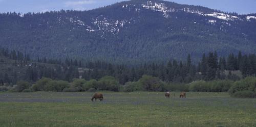 california landscapes views